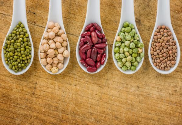 Introducing legumes